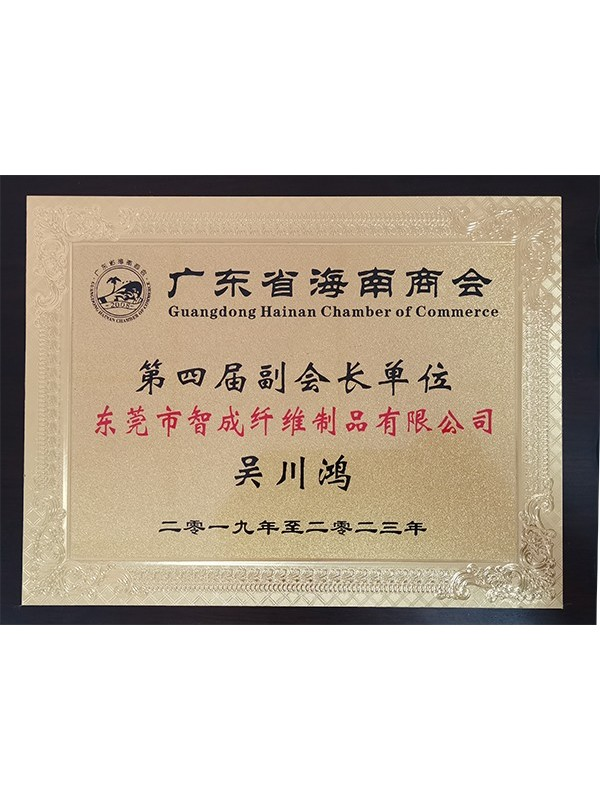赢咖4总经理广东省海南商会第四届副会长单位