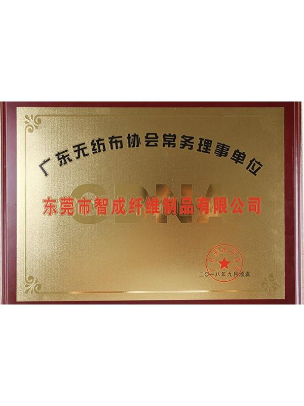 赢咖4广东省无纺布协会常务理事单位